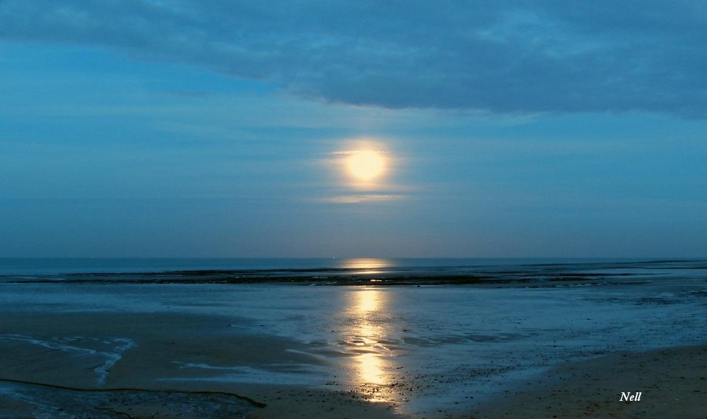 Lune à l'heure bleue (1).JPG
