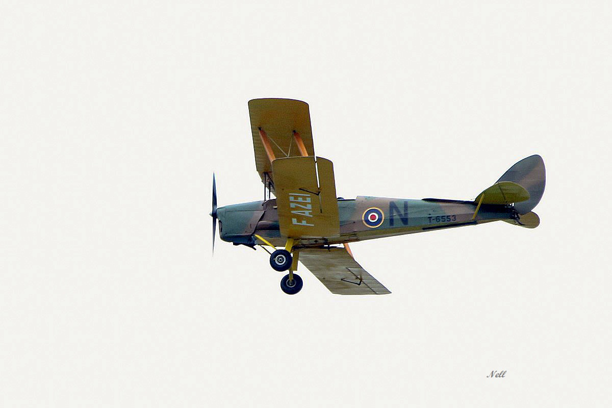 De Havilland DH-82A Tiger Moth RAF (1).JPG