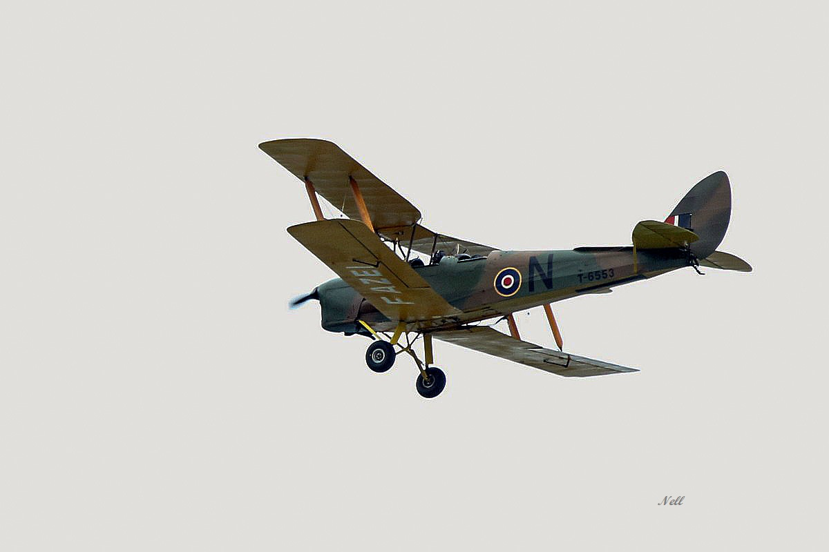 De Havilland DH-82A Tiger Moth RAF (2).JPG