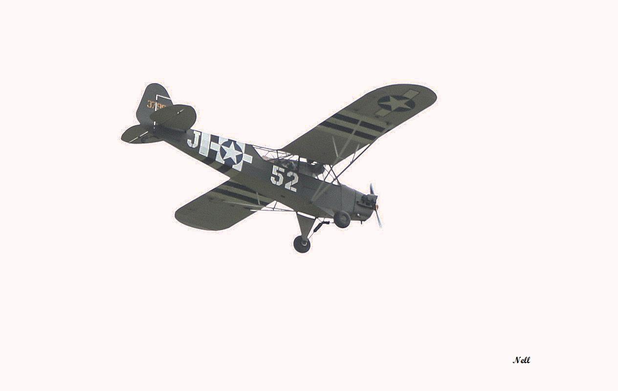 Piper L-4 Grasshopper (4).JPG