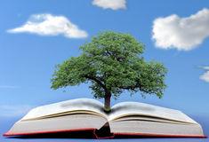 arbre-de-la-connaissance-41923351.jpg