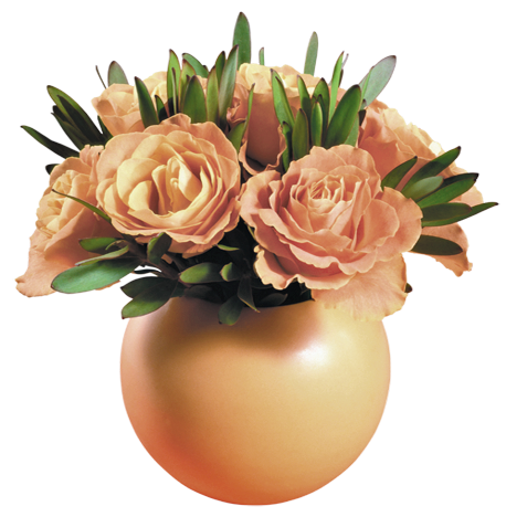 https://static.blog4ever.com/2016/07/820220/VASE-DE-ROSE-.png
