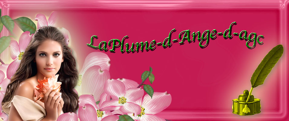 laplume-d-ange-d-agc
