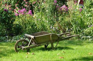 brouette-jardin-mois-apres-mois-mars-300x199.jpg