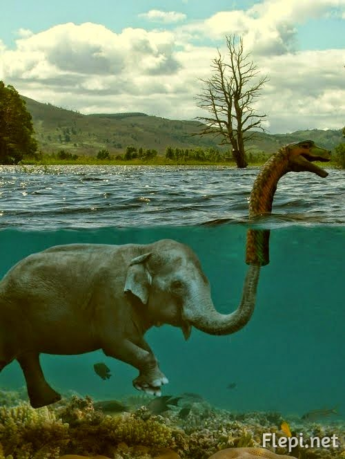 secret-monstre-lochness.jpg