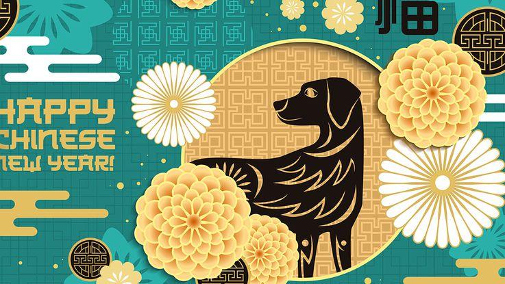 horoscope-chinois-2018-l-annee-du-chien-de-terre (1).jpeg