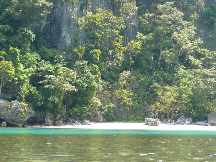 303-trip philippines 2012 714.JPG