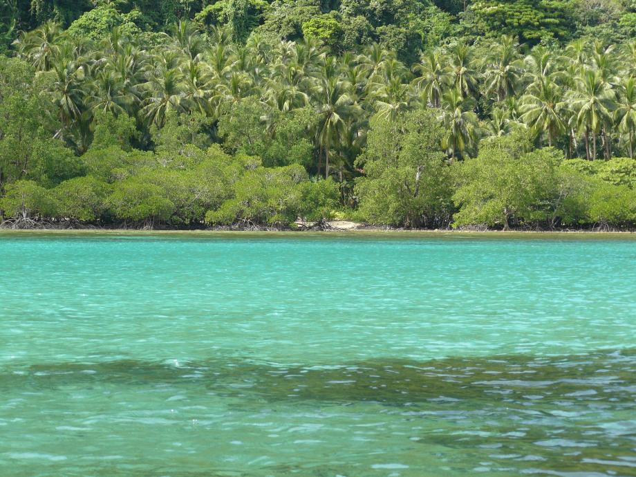 284-trip philippines 2012 695.JPG