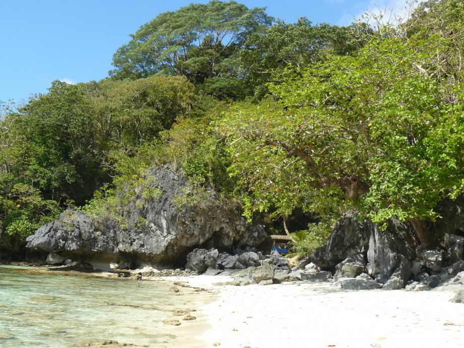 373-trip philippines 2012 880.JPG