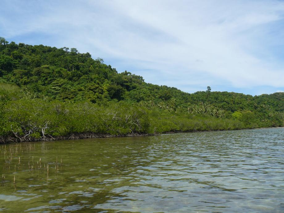 298-trip philippines 2012 709.JPG