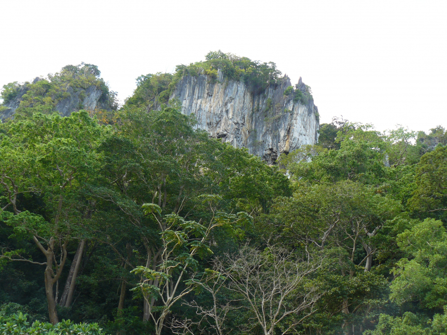 312-trip philippines 2012 723.JPG