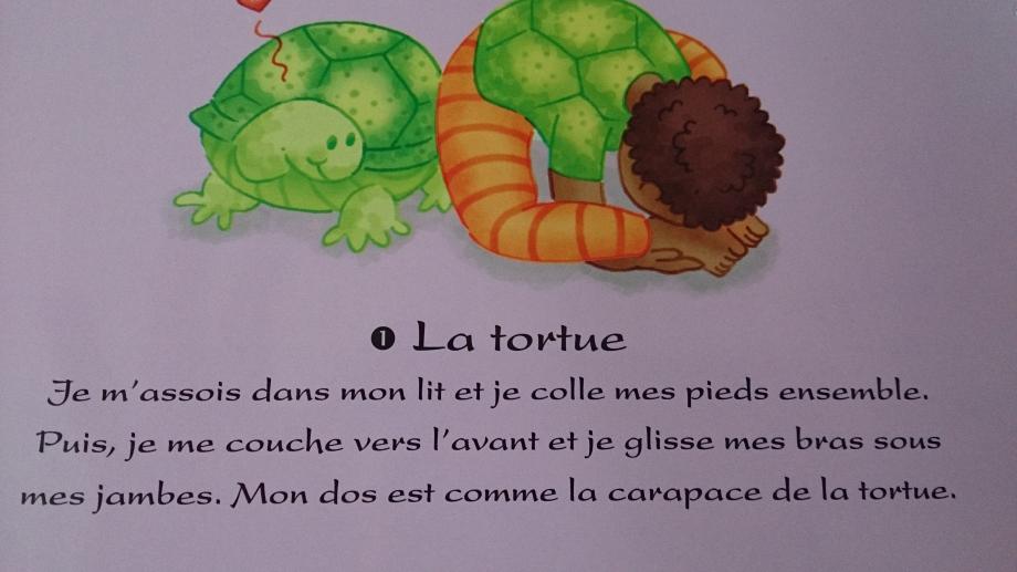 Tortue-activite-avant-dodo.jpg