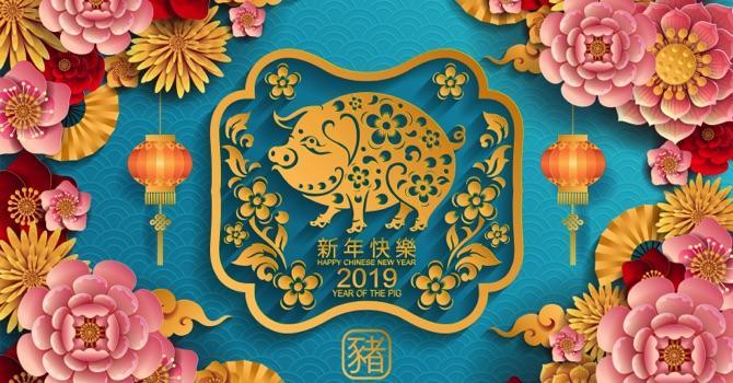 annee-cochon-astrlogie-chinoise.jpg
