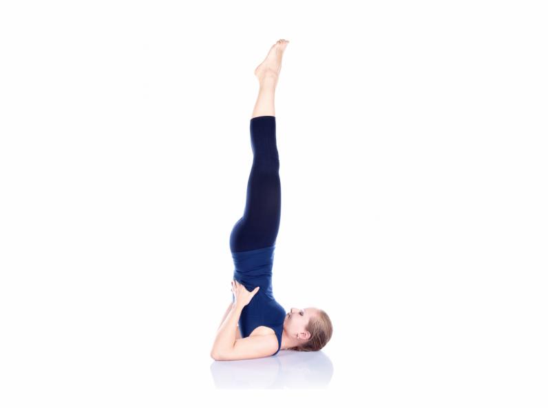 yoga_chandelle_sarvangasana.png