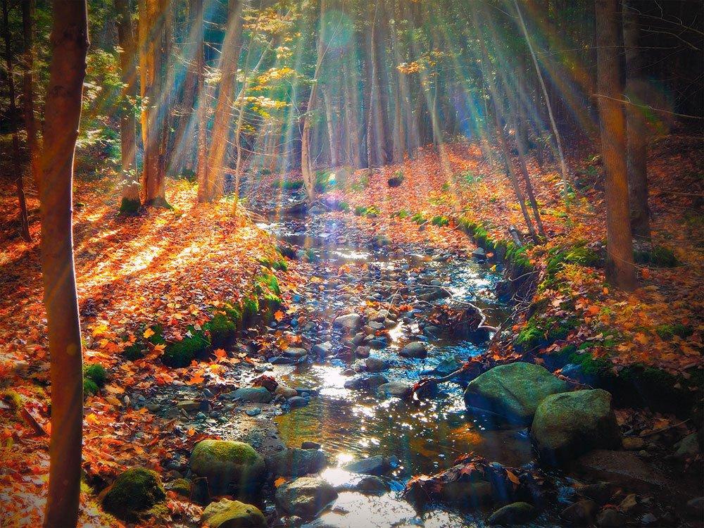automne-au-Quebec-couleurs-saison-riviere-foret.jpg