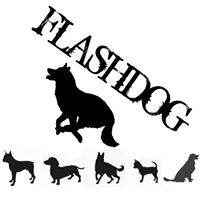 Flashdog.jpg