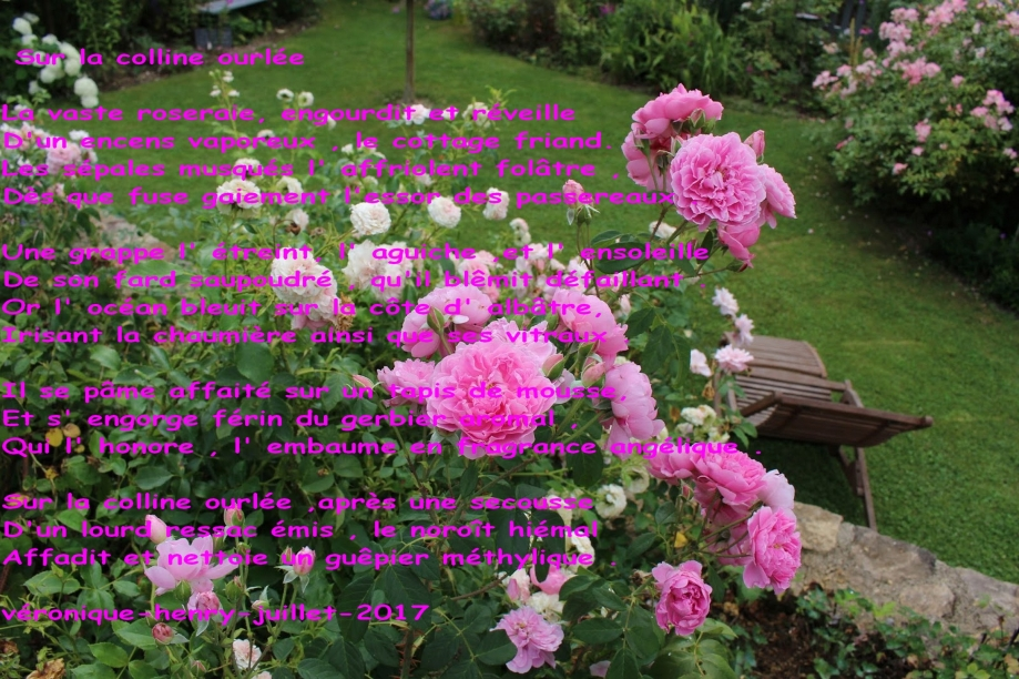 roses fleuries.jpg