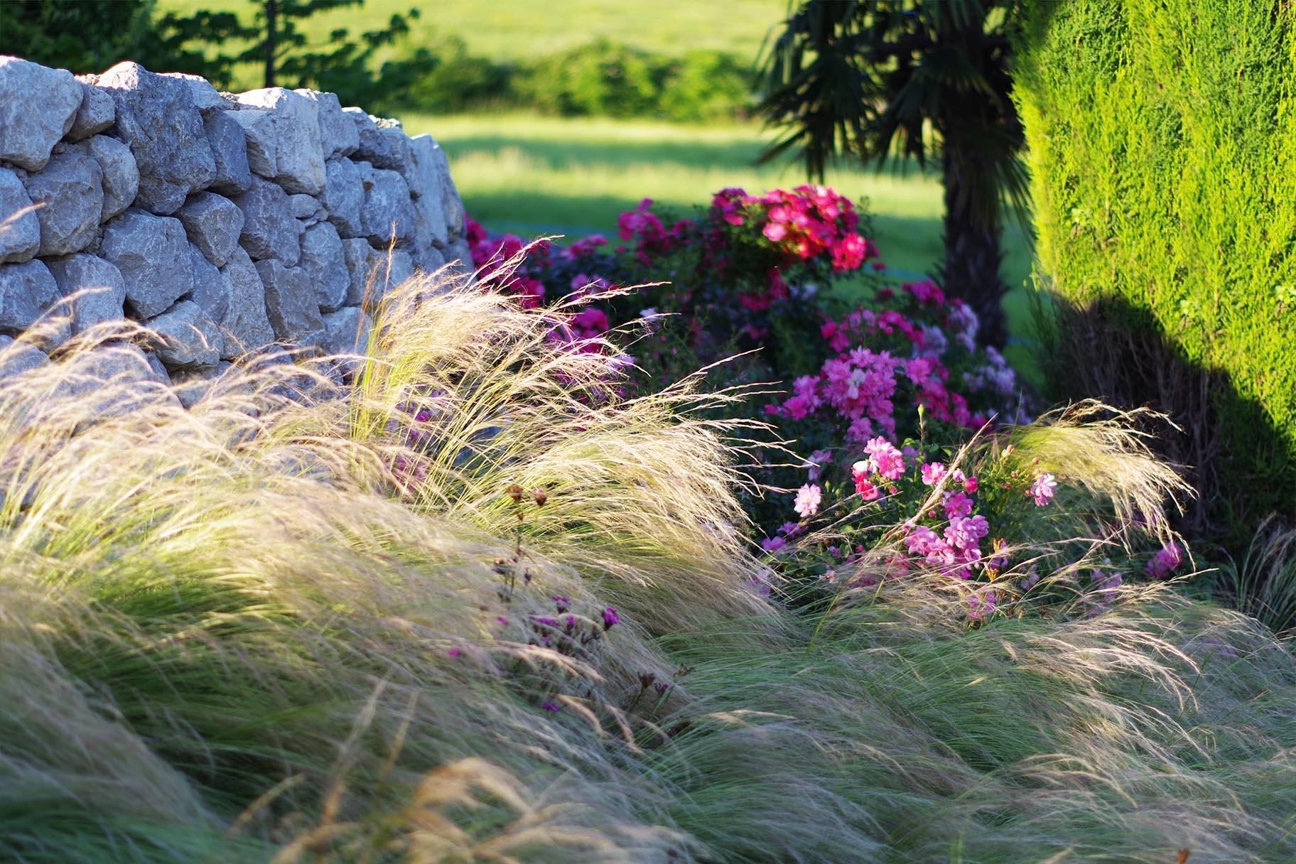 jardin-prive-mur-pierres-seches-graminees-stipas-rosiers-cypres-vimade-architecte-paysagiste.jpg