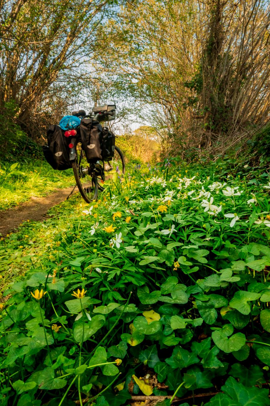 Randonnée Vélo_Le tour des voies vertes en centre Bretagne_ (2 sur 9).jpg