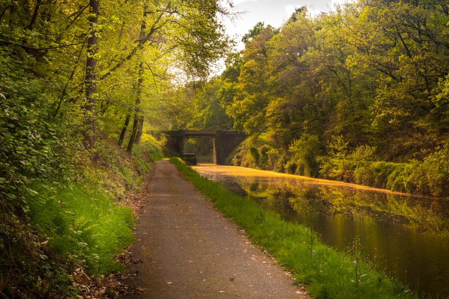 Randonnée Vélo_Le tour des voies vertes en centre Bretagne_ (1 sur 1).jpg