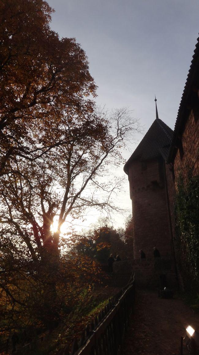 Chäteau du Haut Koenigsbourg