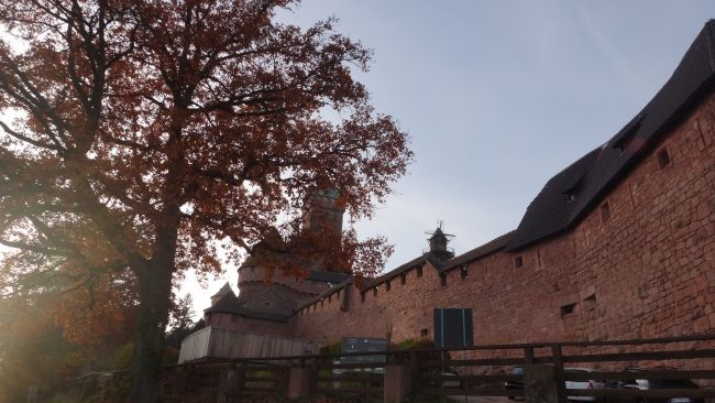 Château du  Haut Koeningsbourg