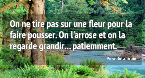 proverbe africain.PNG