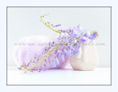 carte postale fleur bouquet de glycine un-oiseau_dans_sa_bulle.com