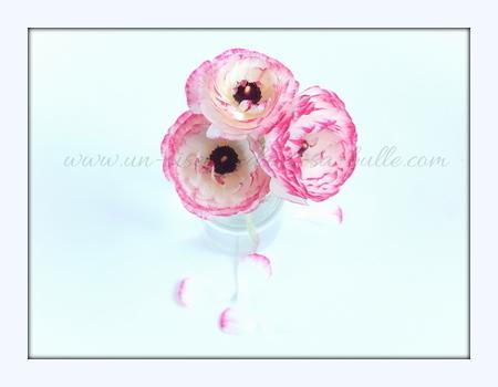 carte postale fleur bouquet de renoncules un-oiseau-dans-sa-bulle.com
