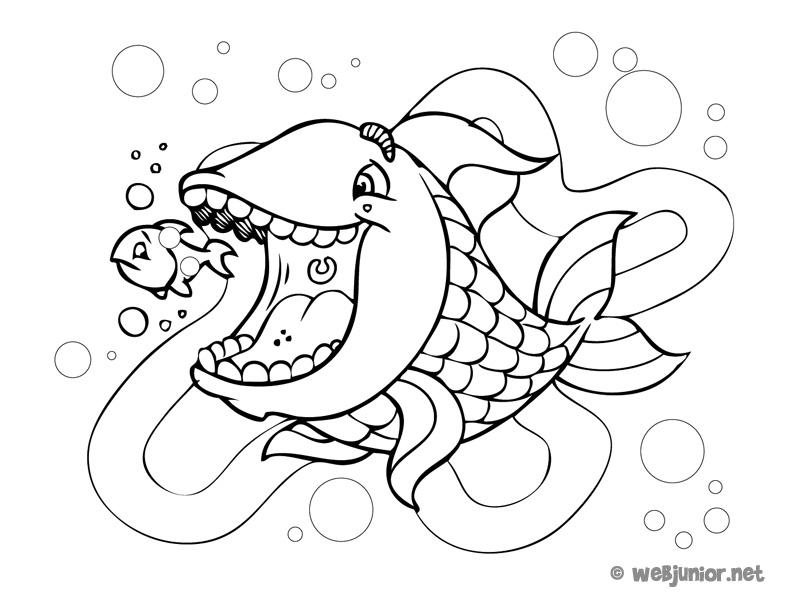 fish2-140427.jpg