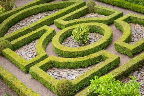 jardin-a-la-francaise-1-main-14204041.jpg