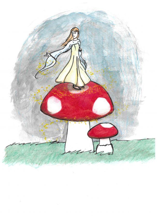 Comment poussent les champignons