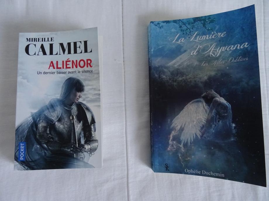 pour ces deux romans,et bien,je n'ai pas été au bout de la lecture.mon but n'est pas d'emettre un avis,une critique quelconque,sur ces romans,ce n'est pas mon travail,tout simplement,il ne correspondent pas à mon style de fantasy.