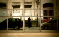 Le D,Corbeau - Photographie