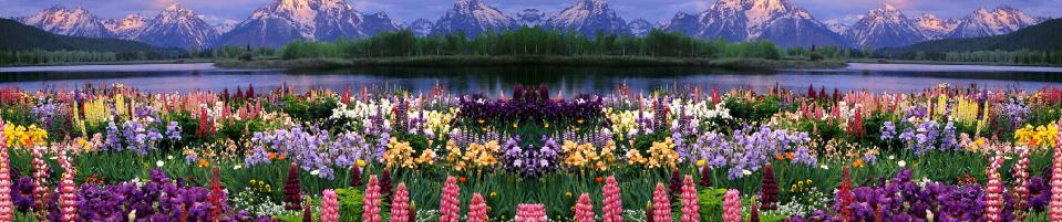 Le Poète et la Nature (N 2)