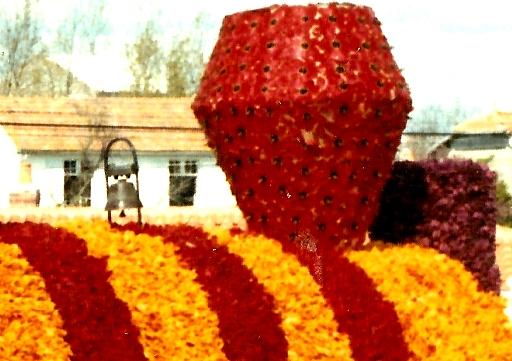 Détail piquage tulipes serrées 3