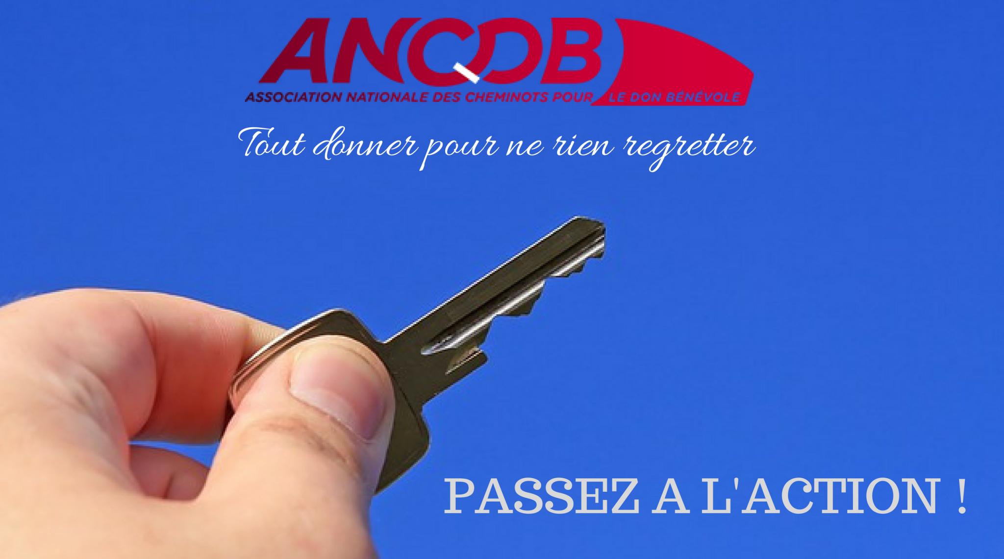 ANCDB - Le Blog !