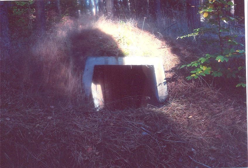 le bunker d'Hoenecker.jpg