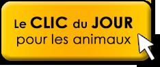 clic-du-jour-button.png