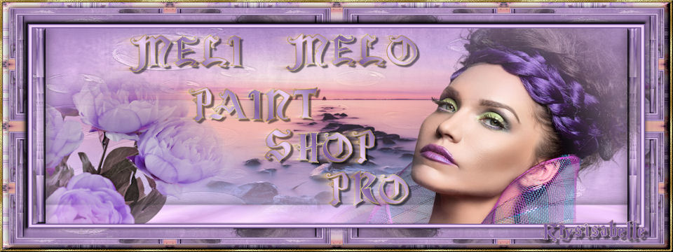 Meli Melo Paint Sho Pro