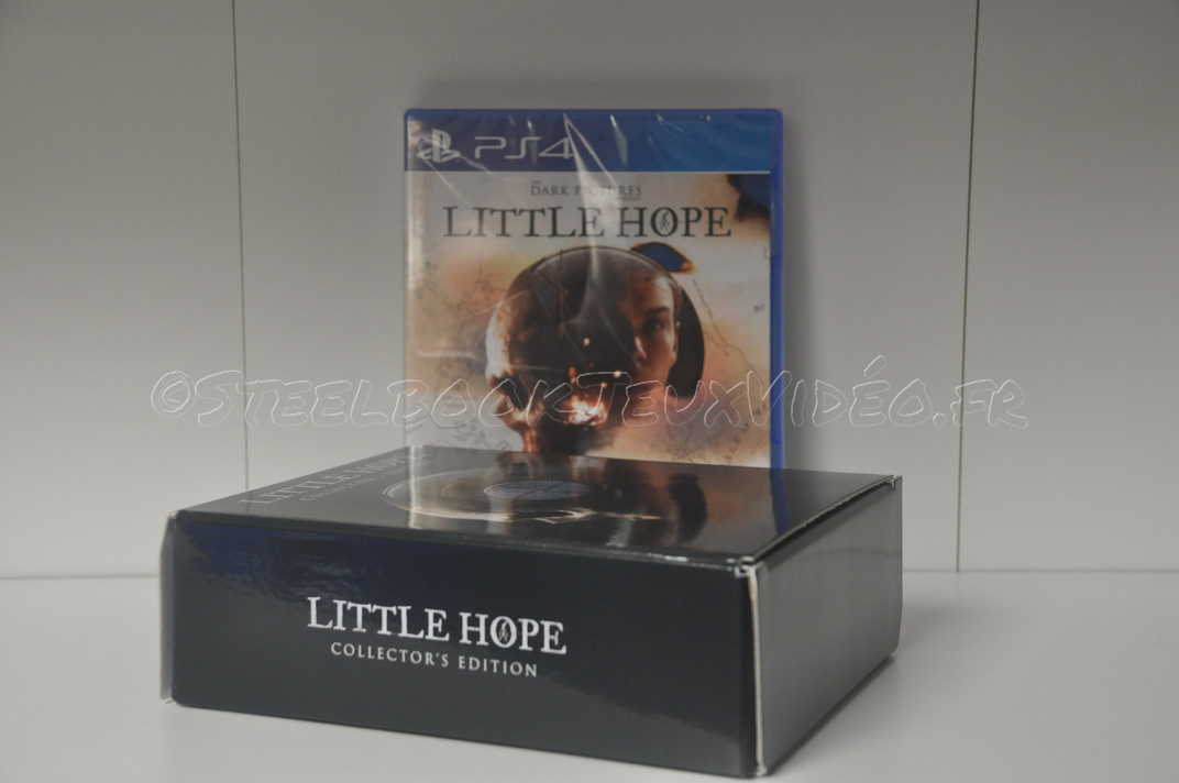 collector-little-hope-3