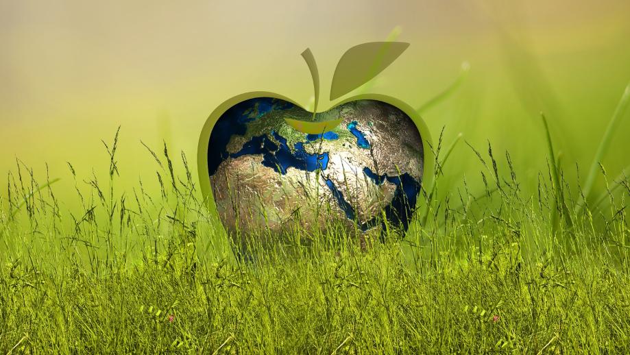 sustainability-3295824_1920