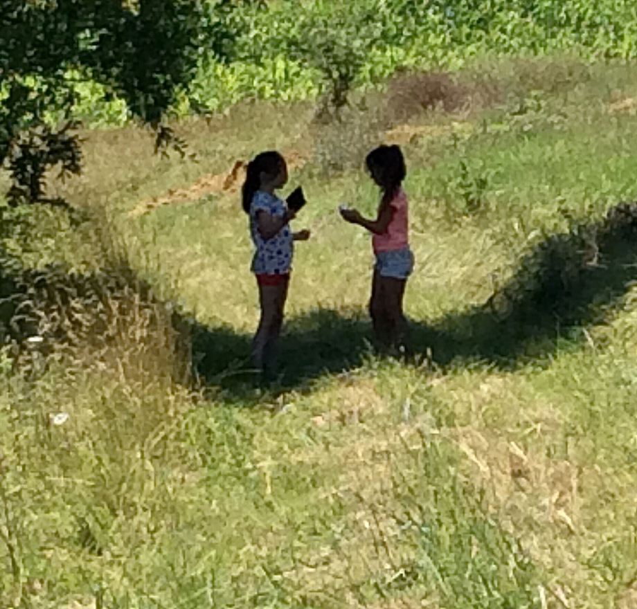 Deux journalistes, Anabelle et Lucie, en reportage sur les arbres autour de chez leurs grands-parents.