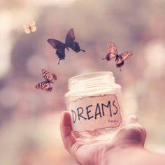 Dreams Harmony