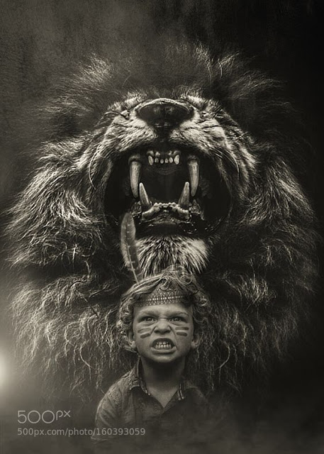 Mon P\\\'tit Roi Lion