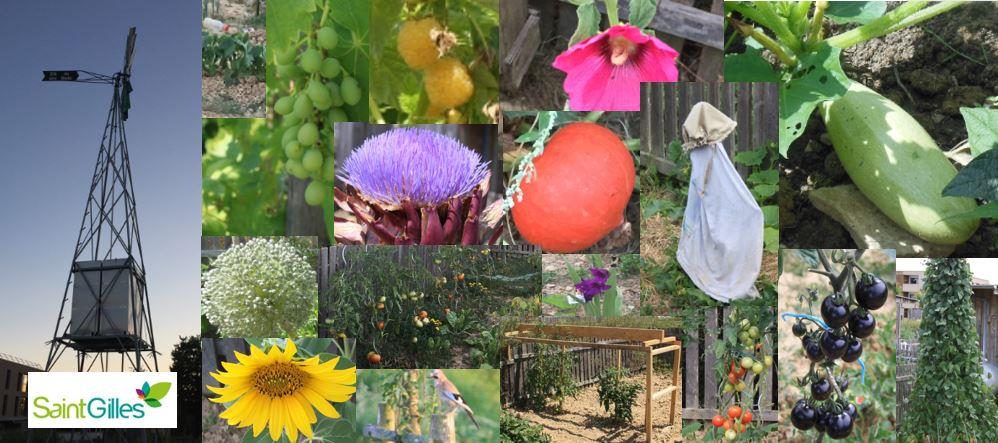 les jardins de l'éolienne - Saint-Gilles