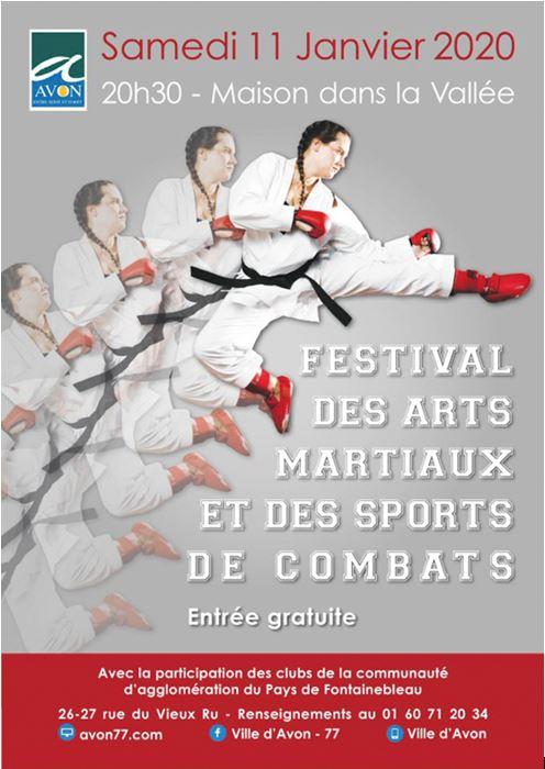 2020-01-11 Festival des arts martiaux.JPG