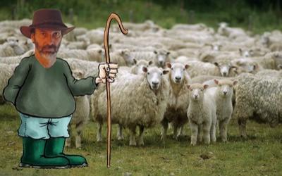 Nous sommes tous des moutons