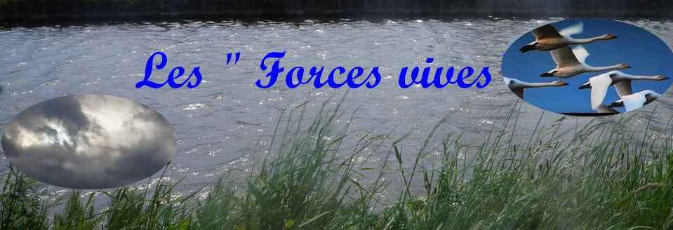 Les Forces vives