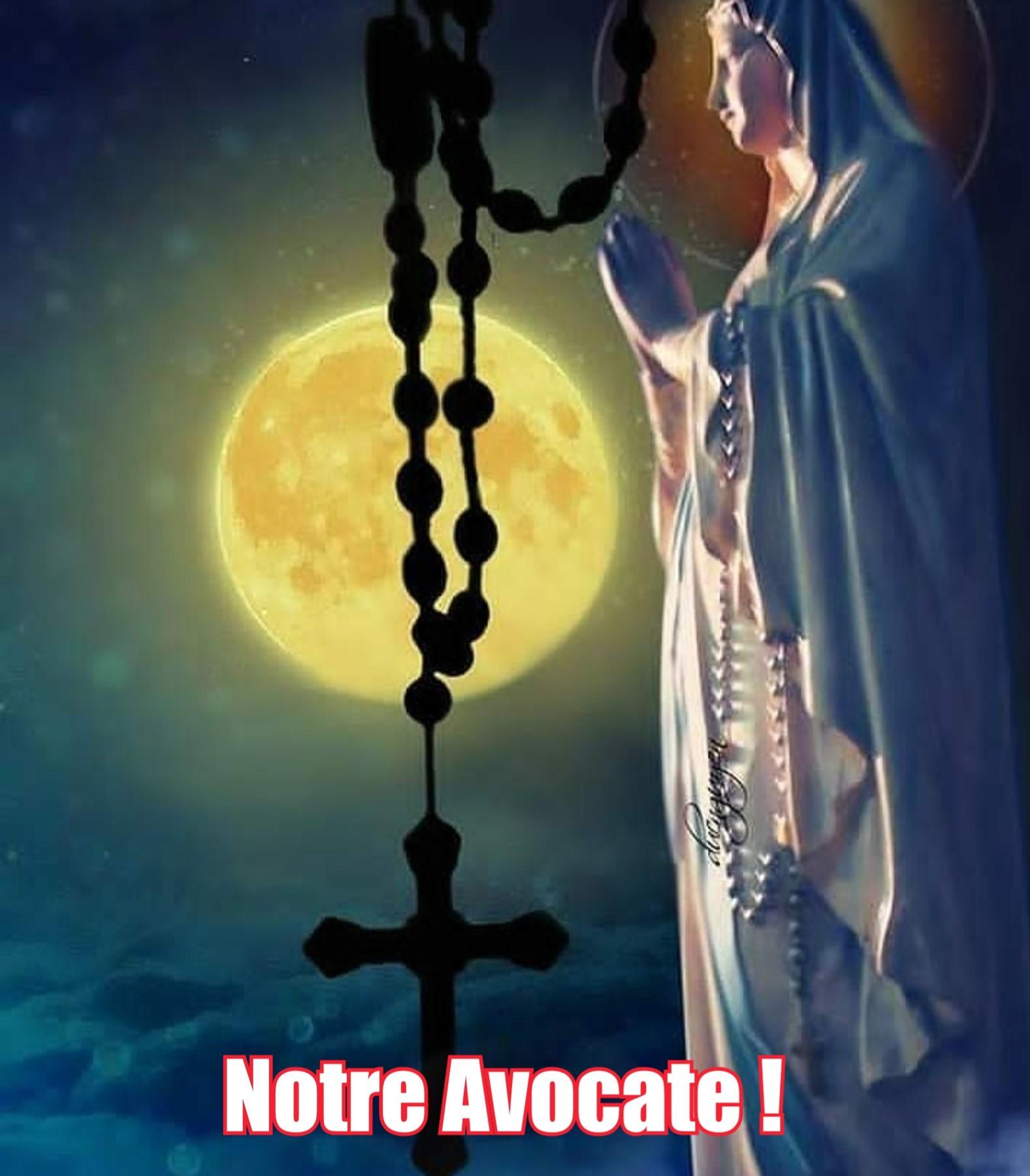 7 - Réjouis-toi Marie, notre Avocate ! - Jésus par Marie